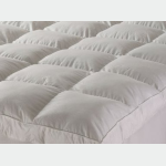 'Club Suite' Bedding